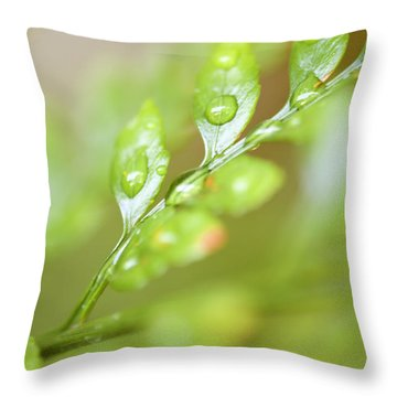Fern Fronds Throw Pillow