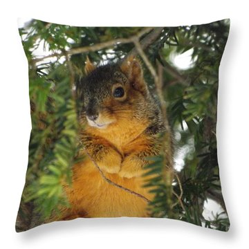 Fox Squirrel Throw Pillow