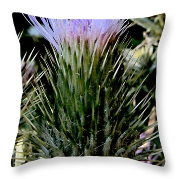 Glowing Purple Thisle Flower Throw Pillow by Danielle  Parent
