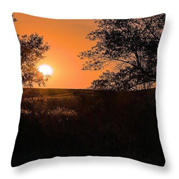 Hayfield At Night Throw Pillow