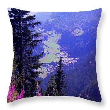 High Mountain Pastures Throw Pillow