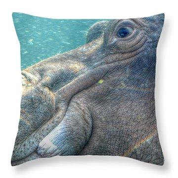 Hippopotamus Smiling Underwater  Throw Pillow