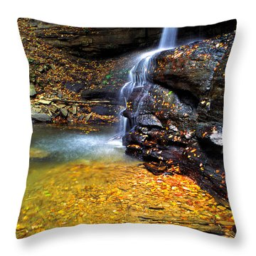 Holly River State Park Upper Falls Throw Pillow by Thomas R Fletcher