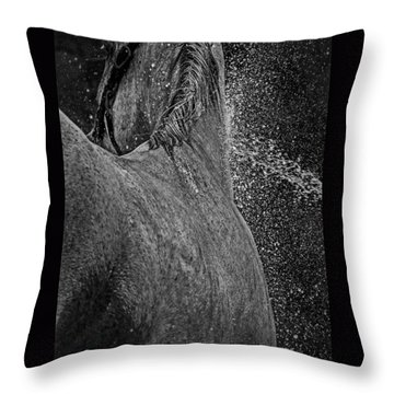 Horse Cool Off Throw Pillow
