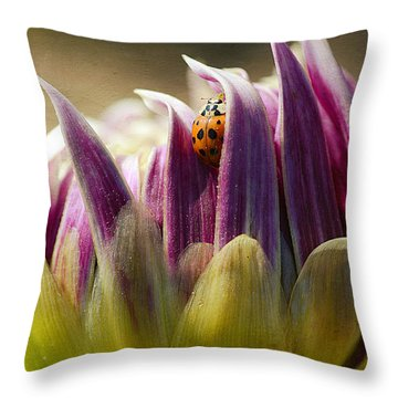 In Between Throw Pillow by Fraida Gutovich