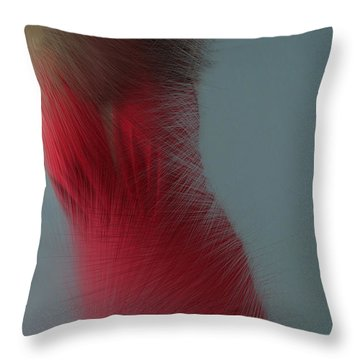 In Red Throw Pillow