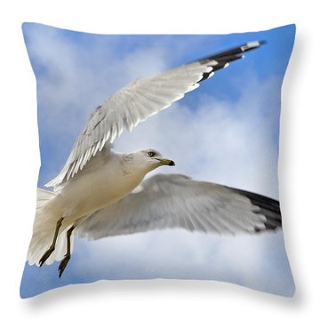 Jekyll Island Seagull Throw Pillow