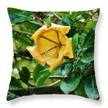 Large Yellow Trumpet Flower II Throw Pillow by Craig Wood