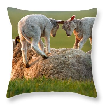 Leap Sheeping Lambs Throw Pillow by Roeselien Raimond
