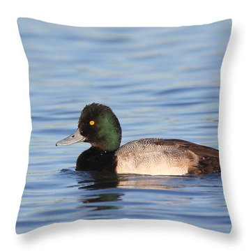 Throw Pillow featuring the photograph  Lesser Scaup by Ruth Jolly