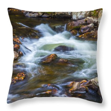 Linville Falls  Throw Pillow