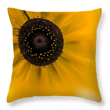 Looking At You Kid Throw Pillow