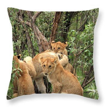 Masai Mara Lion Cubs Throw Pillow