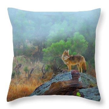 '' Morning Patrol '' Throw Pillow