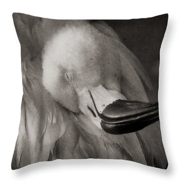 Napping On Flamingo Feathers Throw Pillow