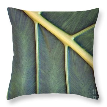 Throw Pillow featuring the photograph  Nervures by Michelle Meenawong