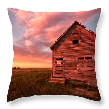 Throw Pillow featuring the photograph  No Trespassing by Ronda Kimbrow