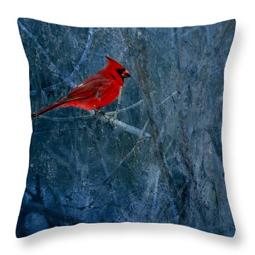 Northern Cardinal Throw Pillow by Thomas Young