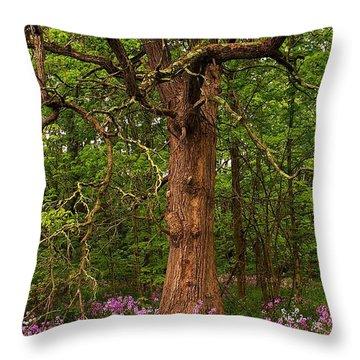 Oak Tree And Dame's Rocket Throw Pillow by Randy Pollard