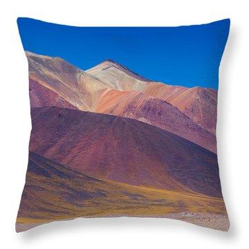 Painted Atacama Throw Pillow