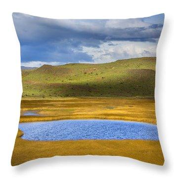 Patagonian Lakes Throw Pillow