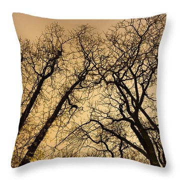 Quarrel Throw Pillow