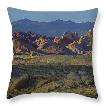 Rainbow Vista Throw Pillow by Rita Mueller
