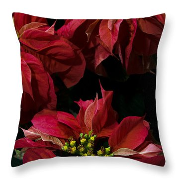 Throw Pillow featuring the photograph  Red Poinsettias Flowers by Chris Scroggins