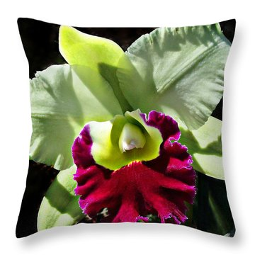 Rlc Pratum Green ' Boonserm ' Hcc Aos 2007 Throw Pillow by William Tanneberger