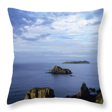 Russian Far East Throw Pillow by Anonymous