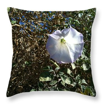 Throw Pillow featuring the photograph  Sacred Datura by Angela J Wright