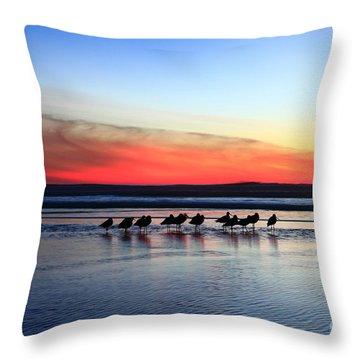 Shorebird Sunset Throw Pillow