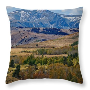 Throw Pillow featuring the photograph  Sierras Mountains by Mae Wertz