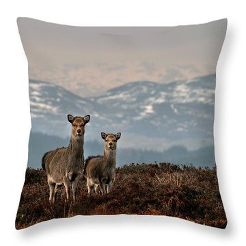 Sika Deer Throw Pillow