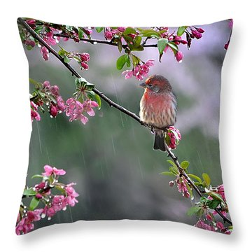 Singing In The Rain  2   Throw Pillow