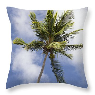Throw Pillow featuring the photograph  Sky And Palm Tree With Coconuts by Bryan Mullennix