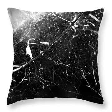 Throw Pillow featuring the photograph  Spidernet by Yulia Kazansky