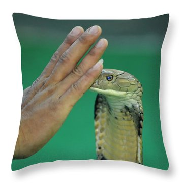 Stay Away Throw Pillow by Michelle Meenawong