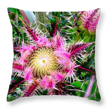 Throw Pillow featuring the photograph  Texas Thistles by Antonia Citrino