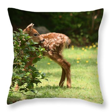That Is My Head On My Body Throw Pillow by Kym Backland