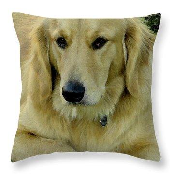 The Golden Retriever Throw Pillow