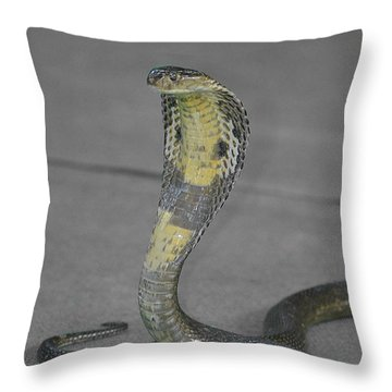 The King Throw Pillow by Michelle Meenawong