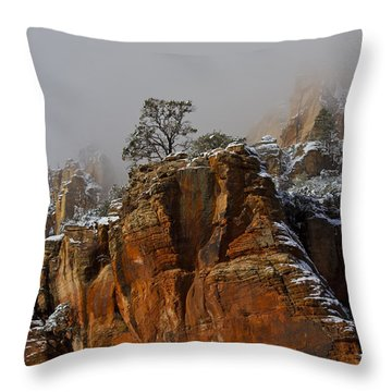 Throw Pillow featuring the photograph  The Lone Tree In Oak Creek by Tom Kelly