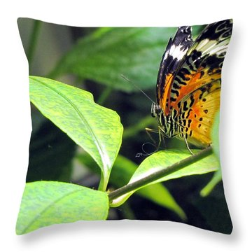 Tiger Wings Throw Pillow