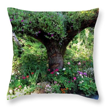 Throw Pillow featuring the photograph  Upside Down Tree by Jennifer Wheatley Wolf