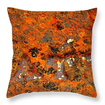 Water Throw Pillow by Chris Berry