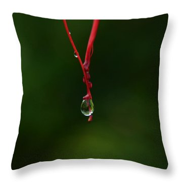 Waterdrop Throw Pillow by Michelle Meenawong