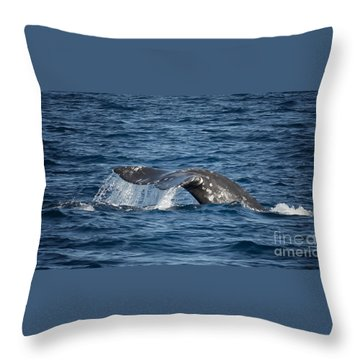 Whale Fluke In Dana Point Throw Pillow