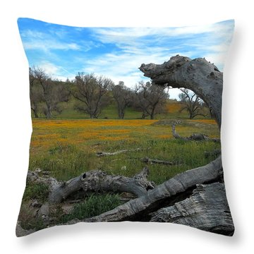 Wild Shell Creek Road Throw Pillow by Paul Foutz