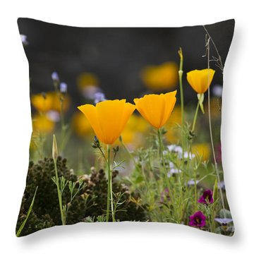 Wildflowers Explode Throw Pillow